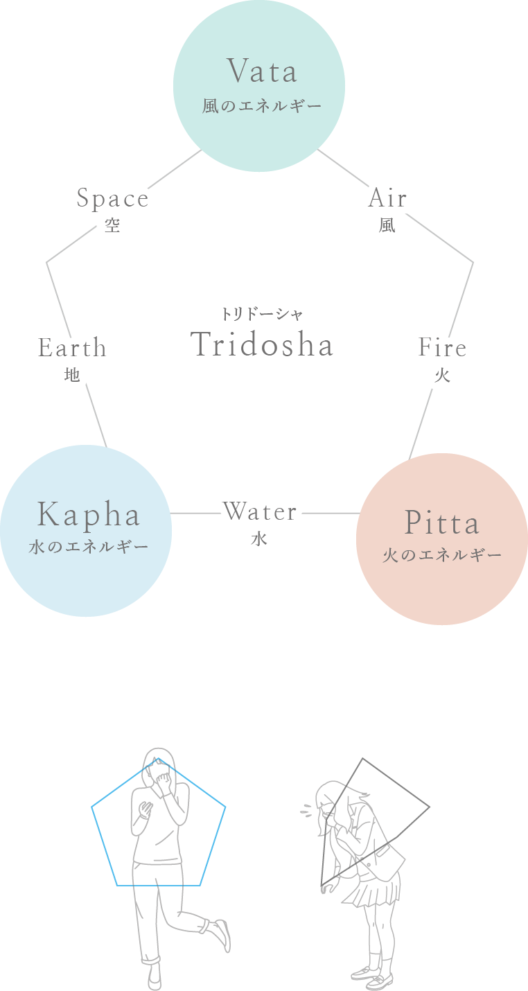 トリドーシャ構図